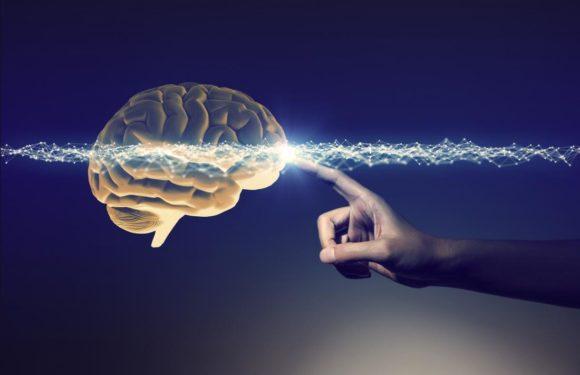 Нейрокорекція